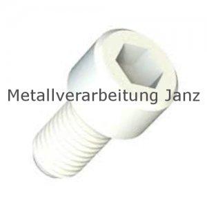 Zylinderschr. mit I-Skt. DIN 912 Polyamid M4x4 - 1.000 Stück