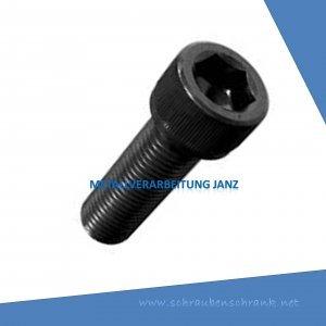 M 30 x 100 mm DIN 912 Zylinderschrauben mit ISK 10.9 blank - 10 Stück
